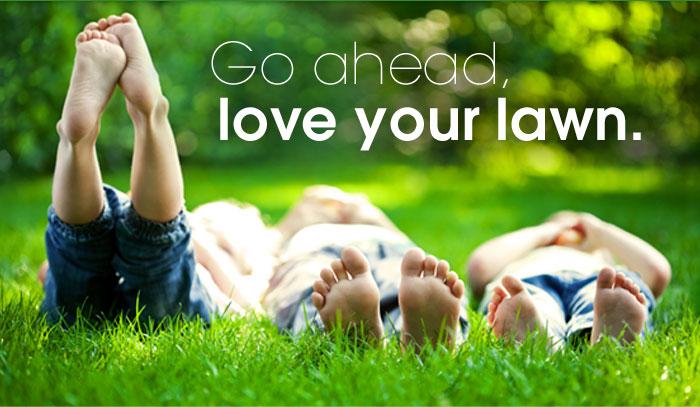 green-lawn-care-atlanta